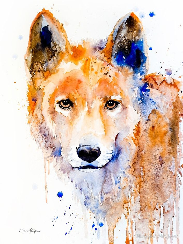 Beautiful Watercolor Portraits Sunga Park Via Behance Art - Game of thrones pet paintings