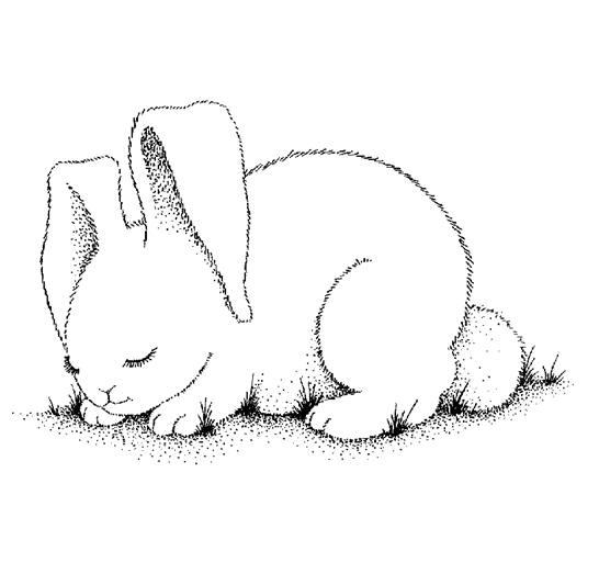 Rabbit | Coloring - Part 2 | Applique Designs/Patterns | Pinterest