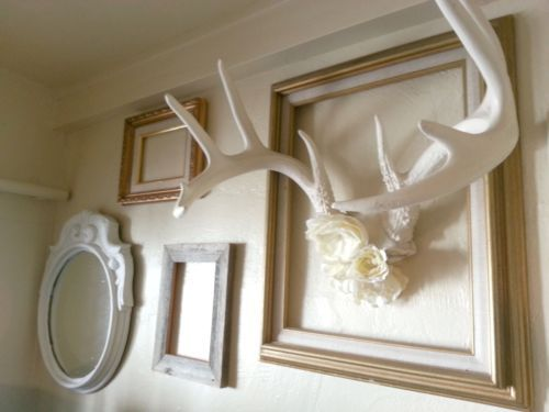 Mounted Deer Antlers Mirror Flowers Frames Unique Vintage