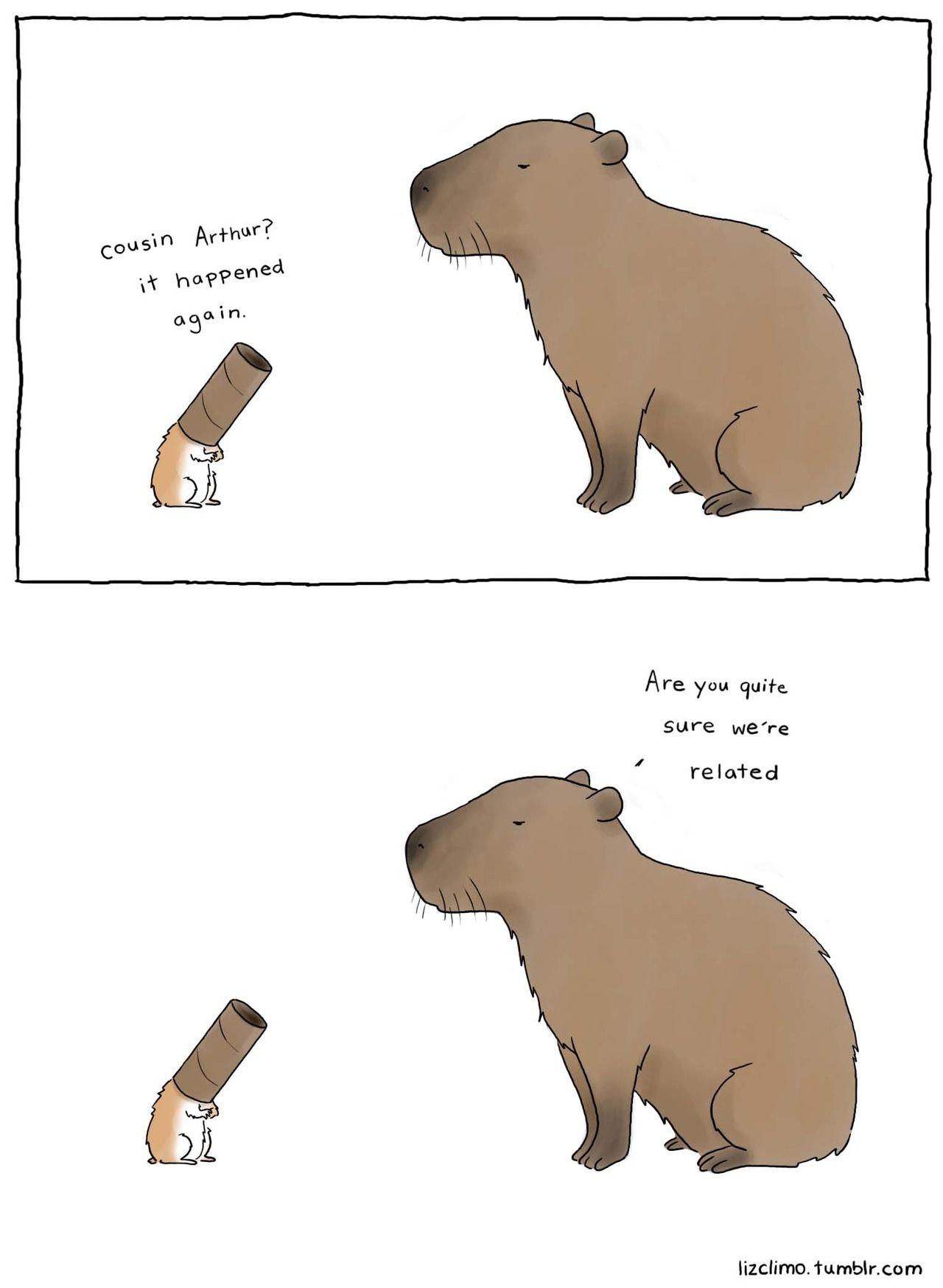 capybaras are fancy. | 動物イラスト | pinterest | 動物 と イラスト