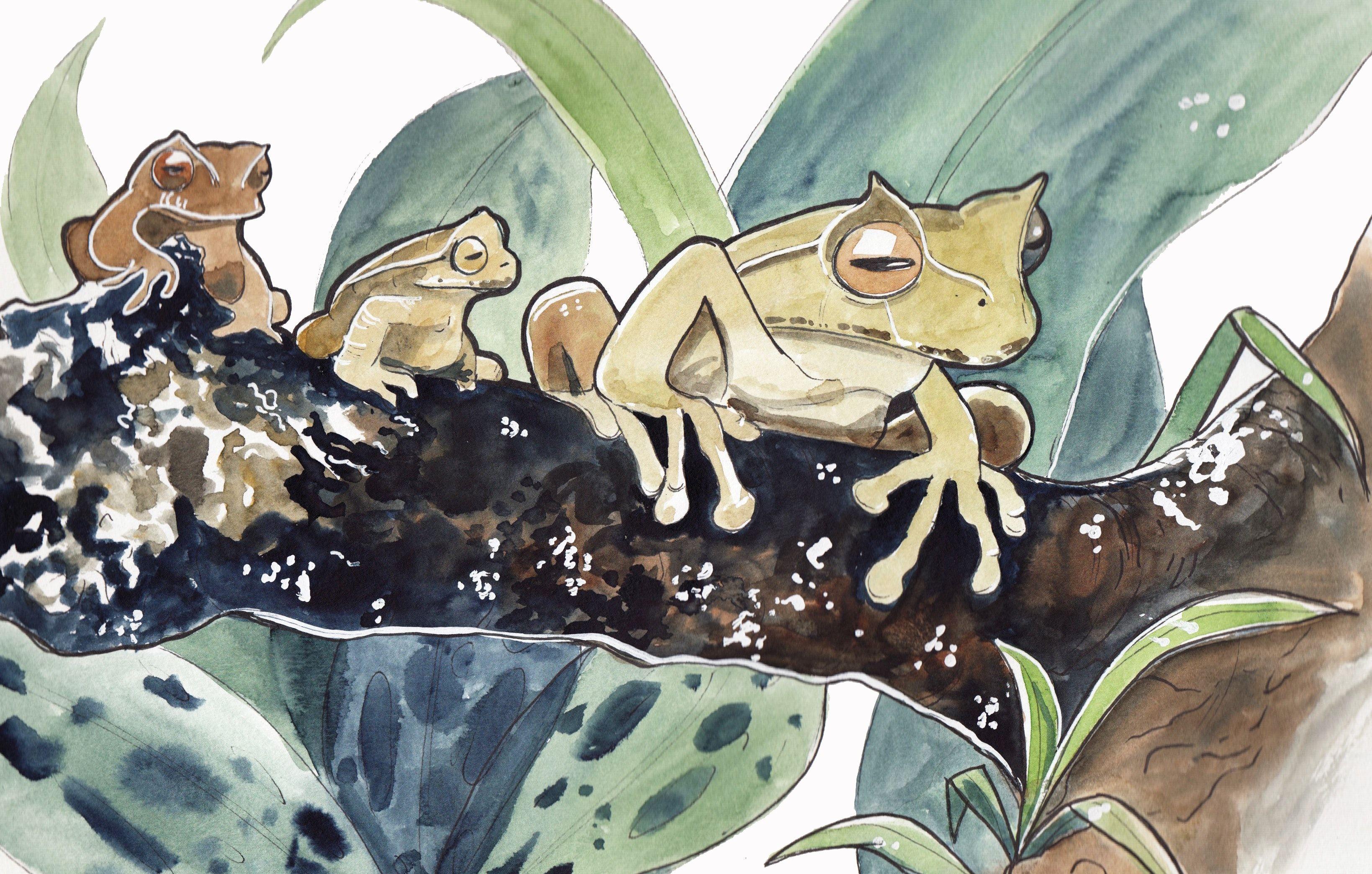 Froggos by Incaseyouart 8.5X11 cardstock print   Vintage ...