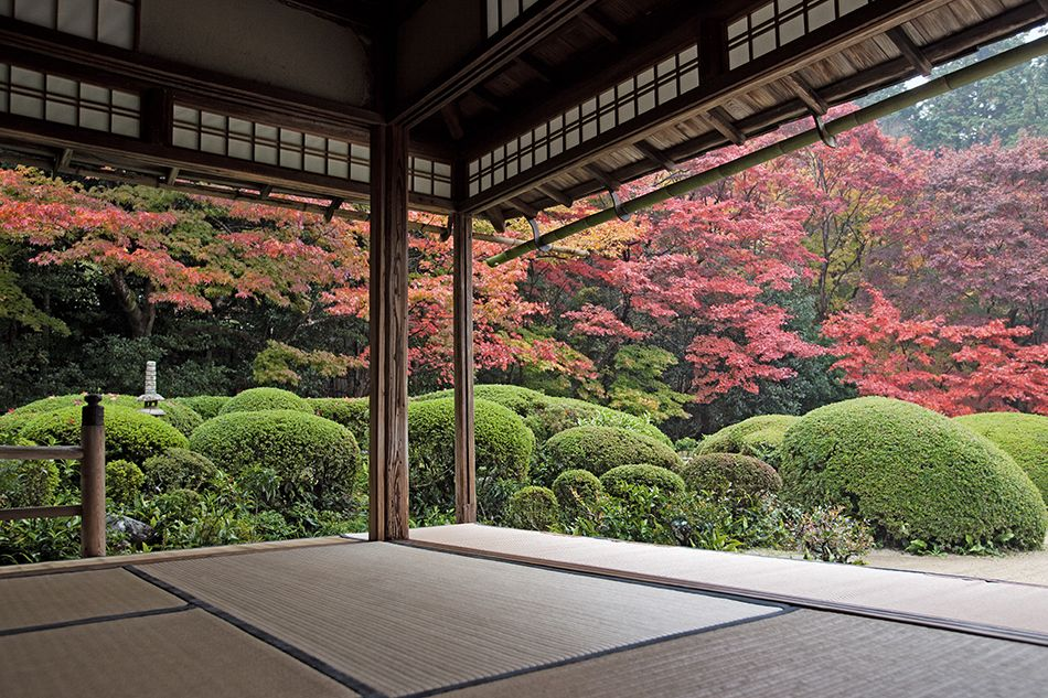 Flash Forward To Spring With These New Garden Books Japanese