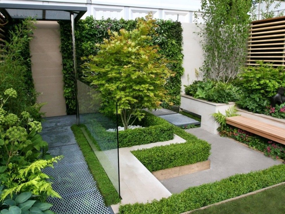 Decoration Charming Home Garden Plants For Small Backyard With Fern Small Hedge Small Backyard Garden Design Small Backyard Gardens Contemporary Garden Design