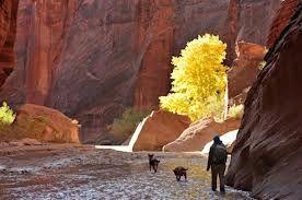 slot canyons - Google Search