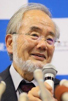 東京工業大学栄誉教授の大隅良典さんのノーベル医学生理学賞の受賞が決まりました 酵母を研究していてアルツハイマーなどの疾病とからんでいるオートファジーについての先進的な研究が評価さてたそうです 人がやらないことに取り組んだことが受賞につながったんですね