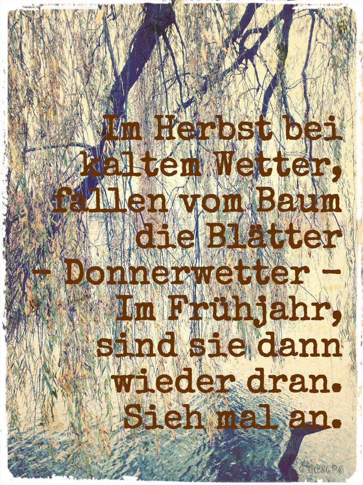 Ein Heinz Erhardt Spruch Genial Heinz Erhardt Gedichte