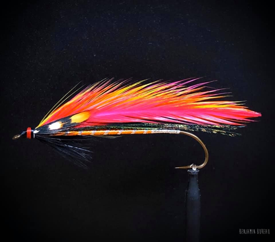 Pin By Tony Norton On Classy Flies In 2020 Carrie Stevens Steven Carry On
