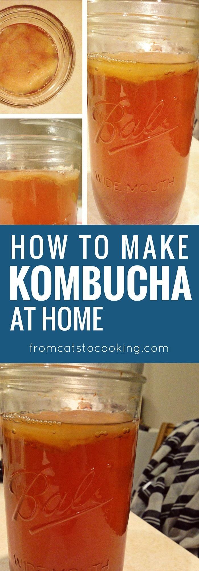 Kombucha Tea Recipe Kombucha how to make, Kombucha