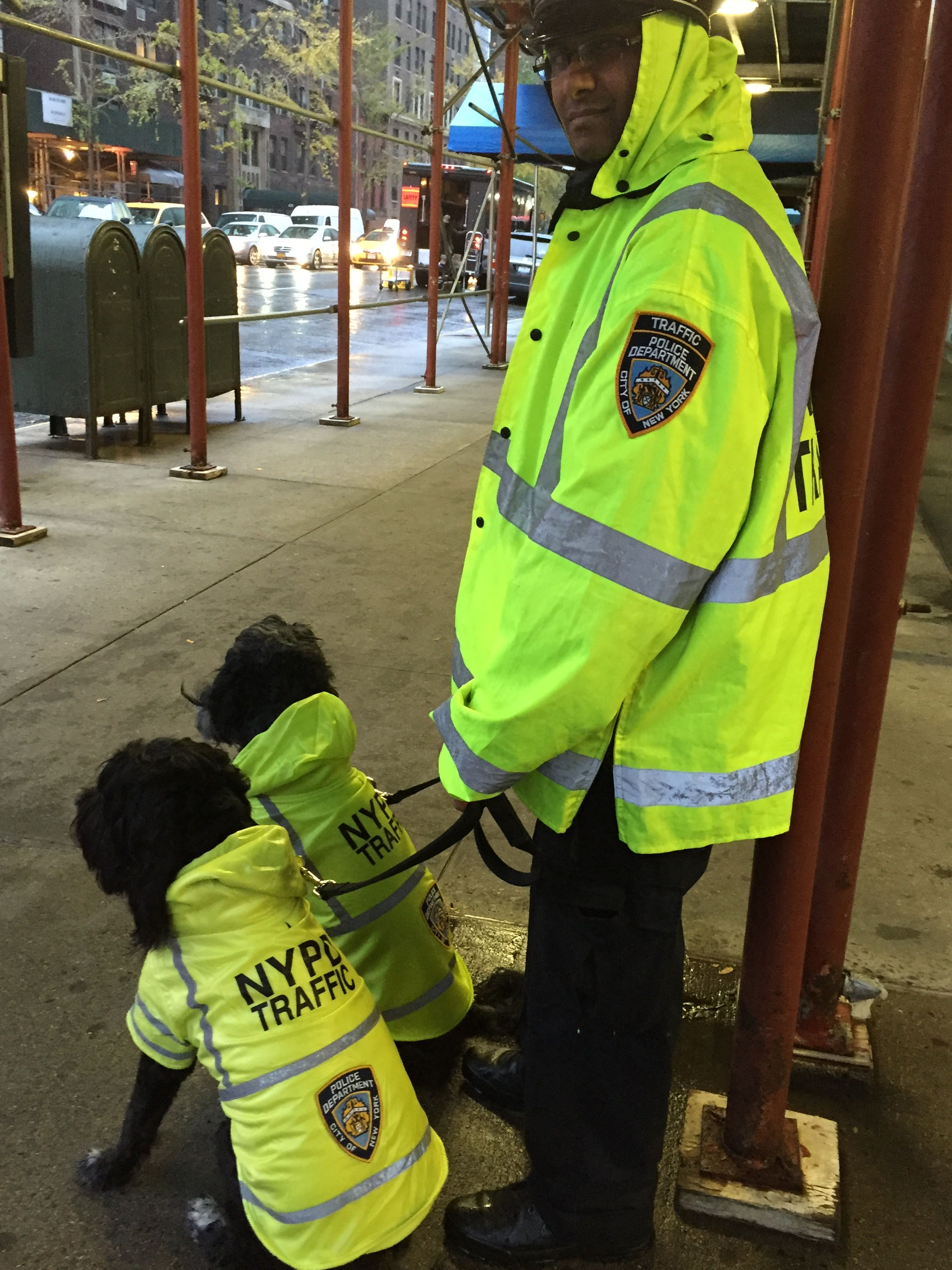 Nypd Traffic Coat Royalanimals Com Nypd Coats Dogs Winter Jackets Osprey Backpack Nypd [ 3264 x 2448 Pixel ]