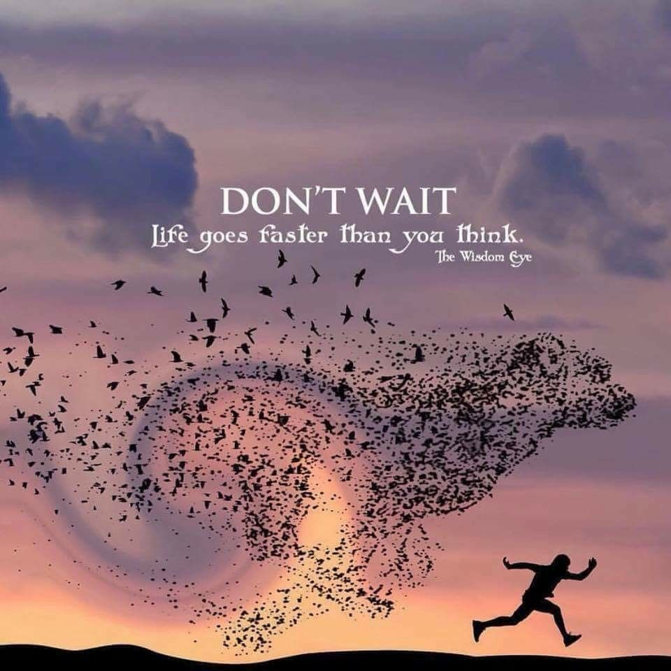 DontWait #LifeIsShort #LifeIsPrecious | Signs & Sayings