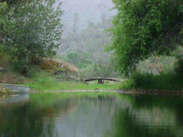 bridge built from reclaimed logs