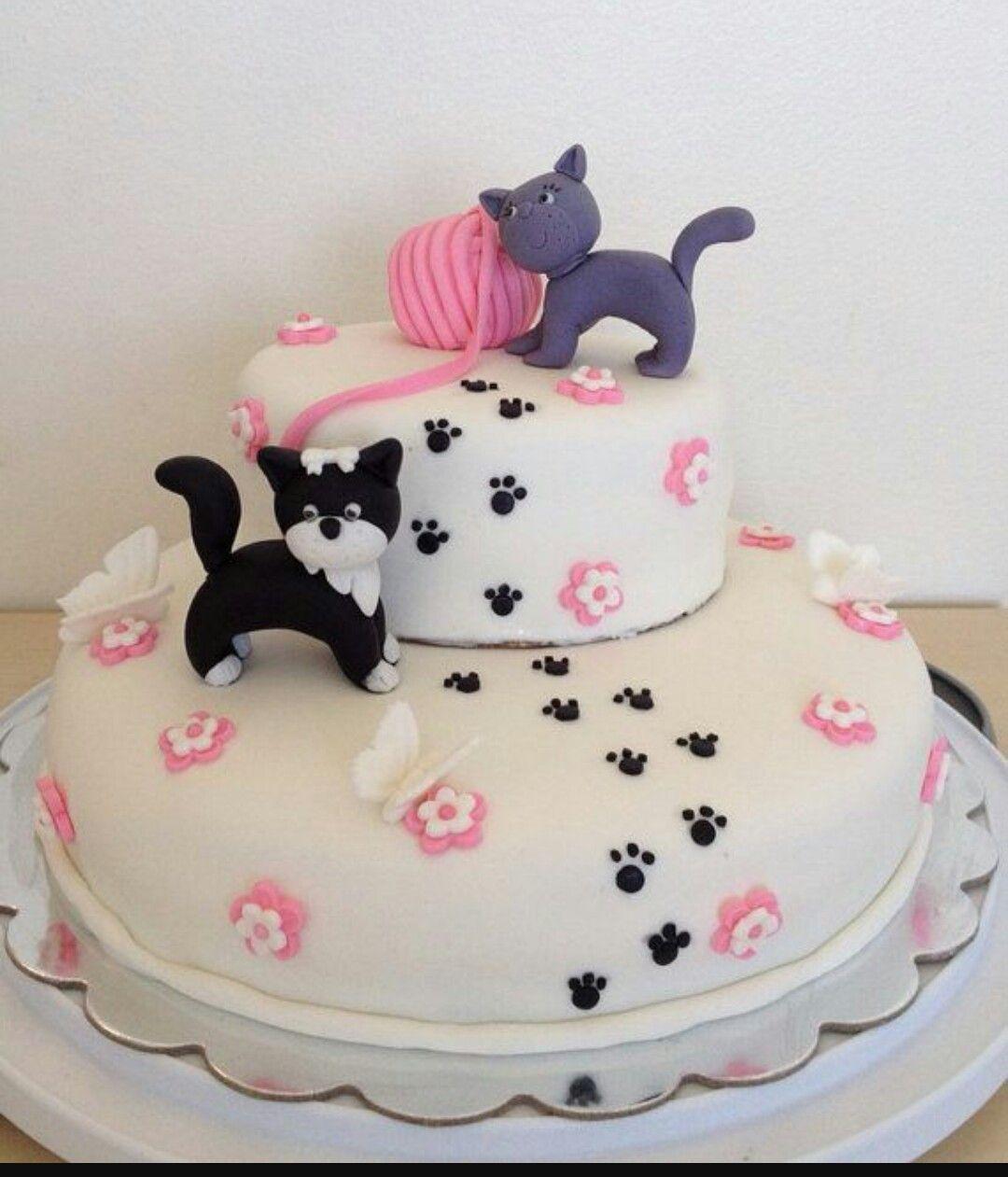 Pin by Cindi Switzer on Birthday Birthday cake for cat