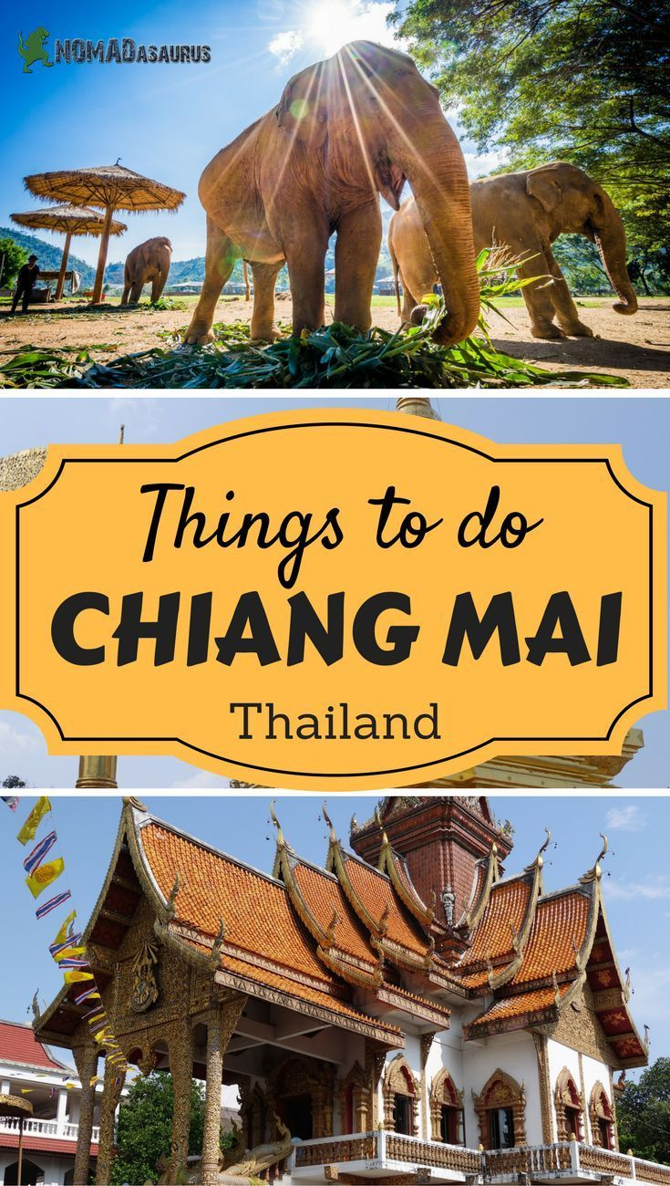 Things To Do In Chiang Mai Chiang Mai Happenings And Asia Travel - Thailand vacation 10 things to know before you take off