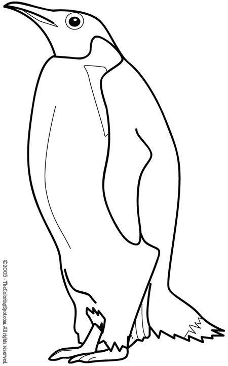Kleurplaten Dieren Pinguin.Dier Vormen Kleurplaten Google Zoeken Pinguin Tekenen