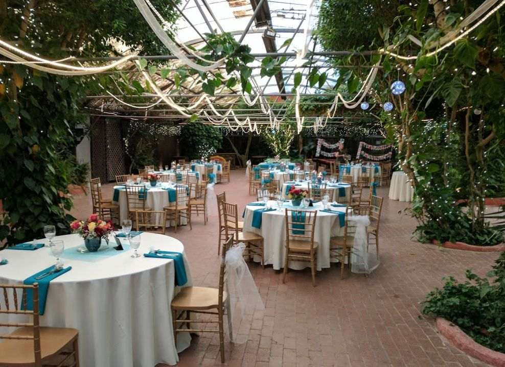 Boojum Tree Hidden Garden Wedding Venue