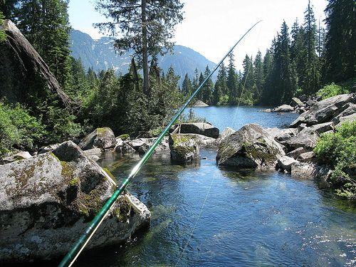 Fly Fishing   Flickr - Photo Sharing!