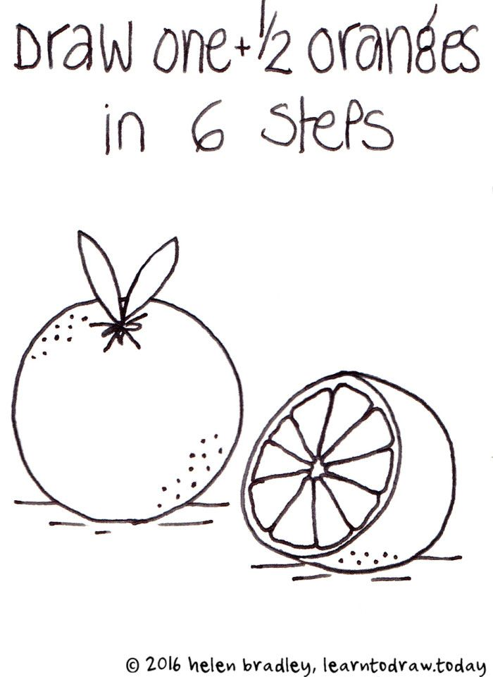 How To Draw Half An Orange In 6 Steps Learn To Draw Learn How