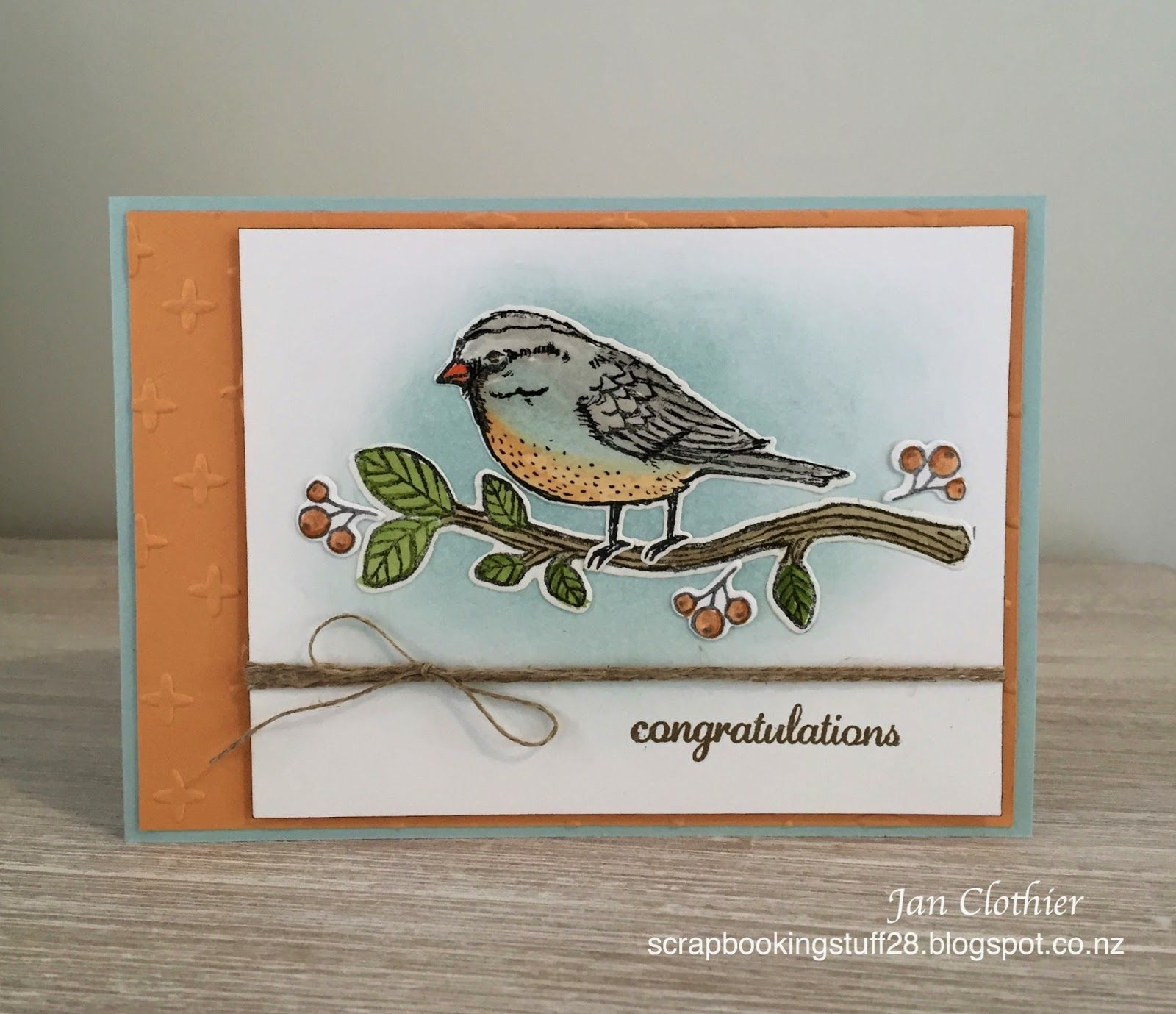 When the reminder about the Birds and/or colour challenge at The House of Cards came through this morning, it really did jog my memory as w... #stampin#39;up!cards