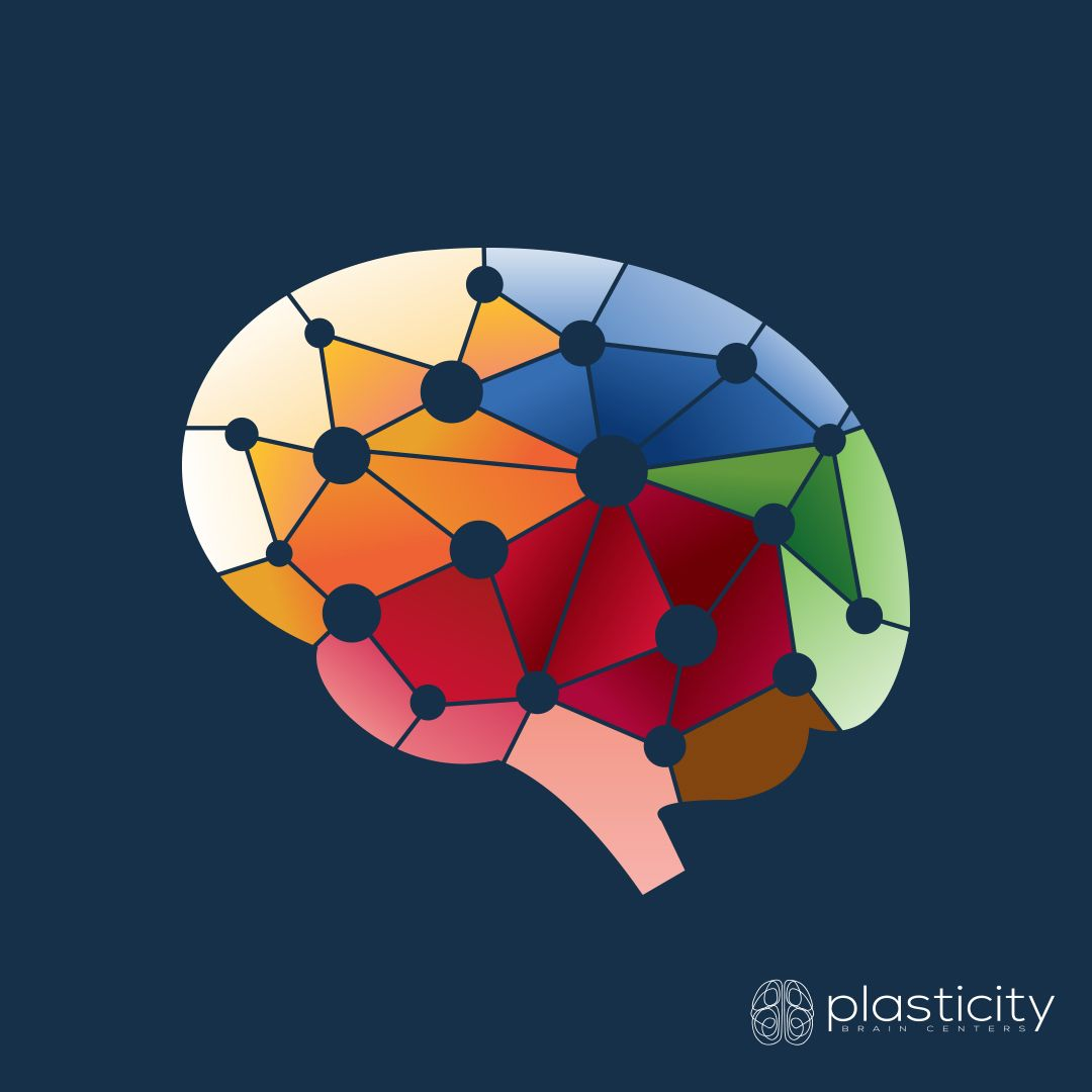 What Is Neuroplasticity A Brain S Plasticity Refers To