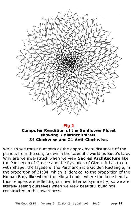 Sunflower floret and Fibonacci sequence | Geometry in 2018 ...