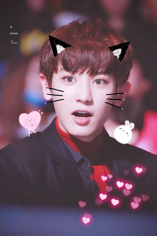 Exo Yeol Chan Chanyeol Cute Cat Parkchanyeol Love Wallpaper
