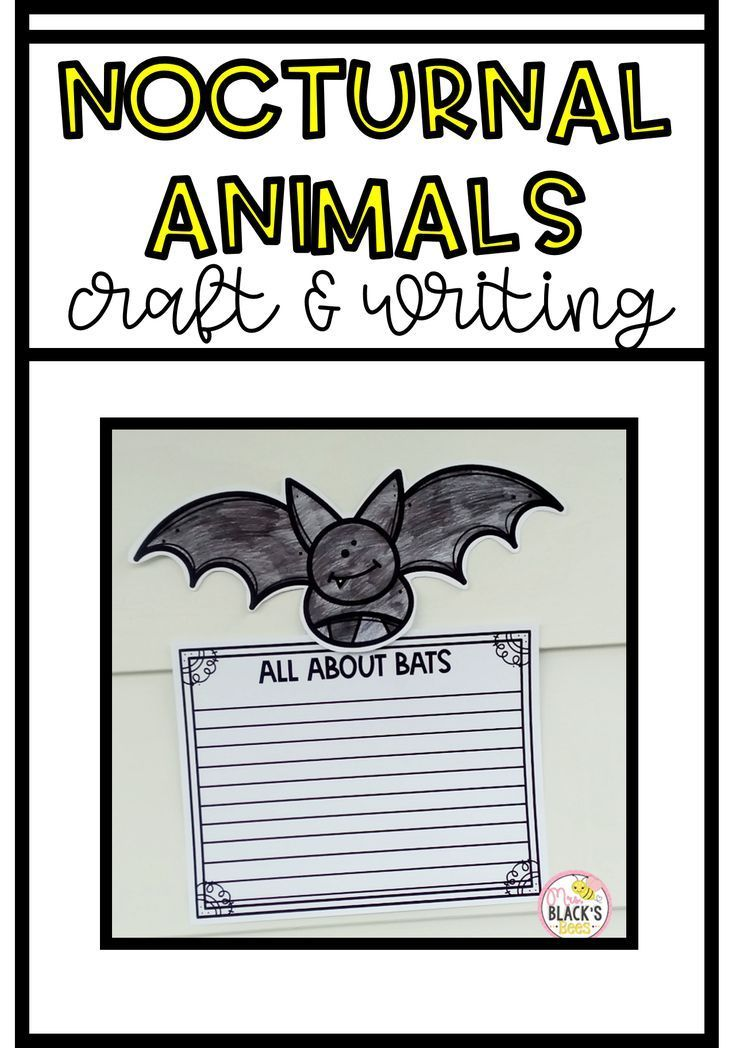 Nocturnal Animals Crafts and Writing Nocturnal animals