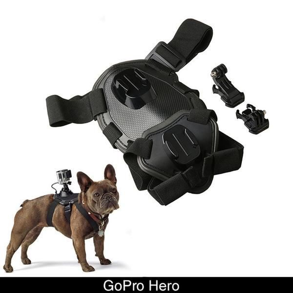 Gopro Dog Harness Sport Camera Dog Devices Tools Outdoor Dog