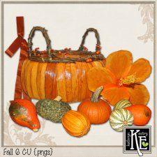 Fall 6 CU cudigitals.com cu commercial scrap scrapbook digital graphics#digitalscrapbooking #photoshop #digiscrap #scrapbooking