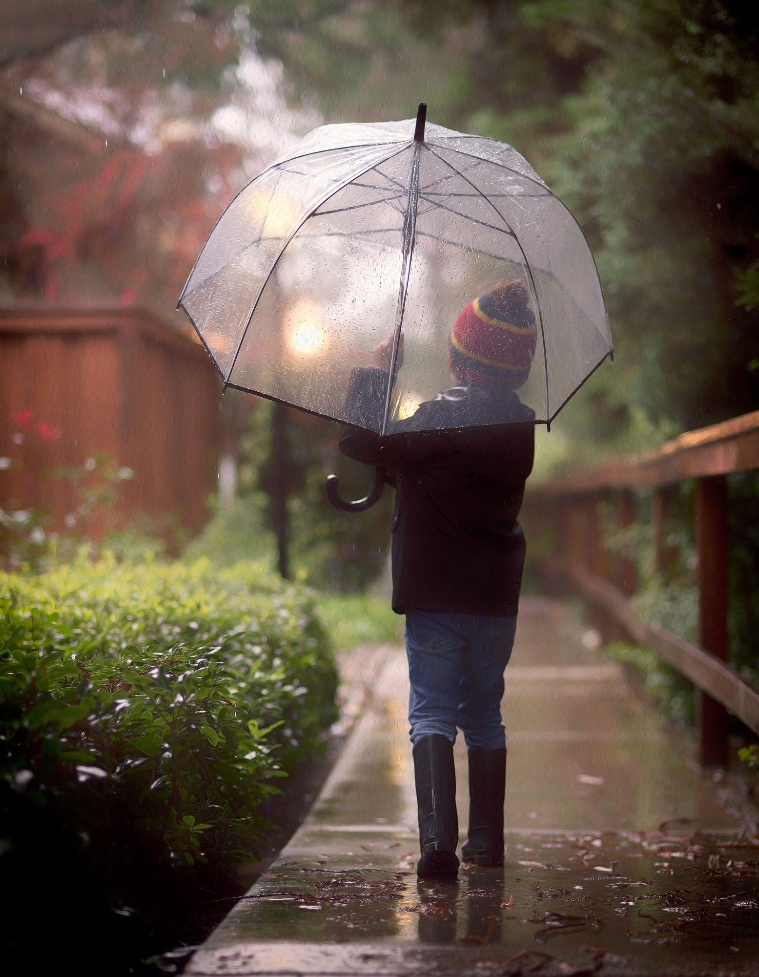 Rainy by Sonja Stone