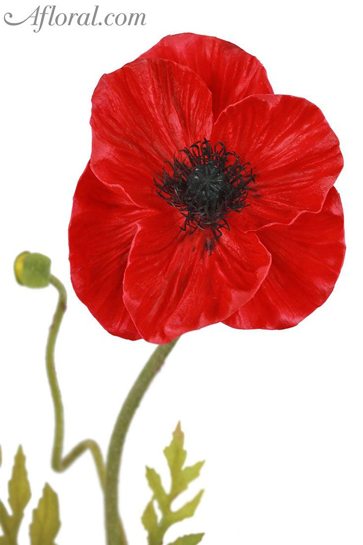Real Touch Poppy In Red 24 Pinterest Red Wedding Flowers Red