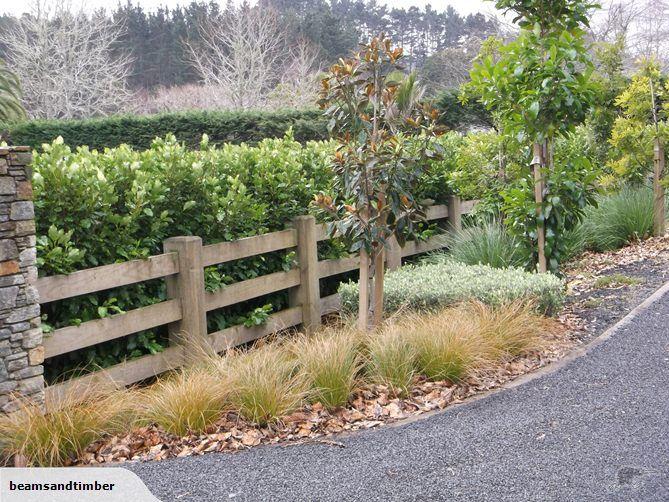 Btm Interlocking Post And 3 Rail Fence With Griselinia Lucida