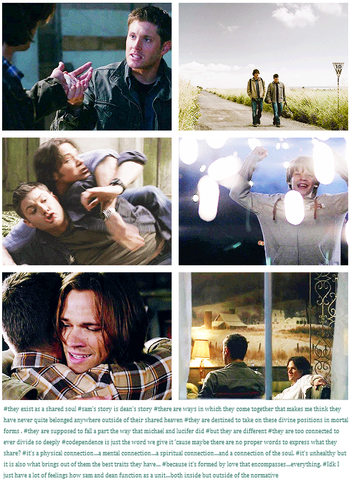 They exist as a shared soul; Sam's story is Dean's story. There are ways in which they come together that make me think they have never quite belonged outside of their shared Heaven. They are destined to take on these divine positions in mortal forms. They are supposed to fall apart the way that Michael and Lucifer did, but they are different. They are too connected to ever divide so deeply. Their codependence brings out the best traits they have;it's formed by love that encompasses…