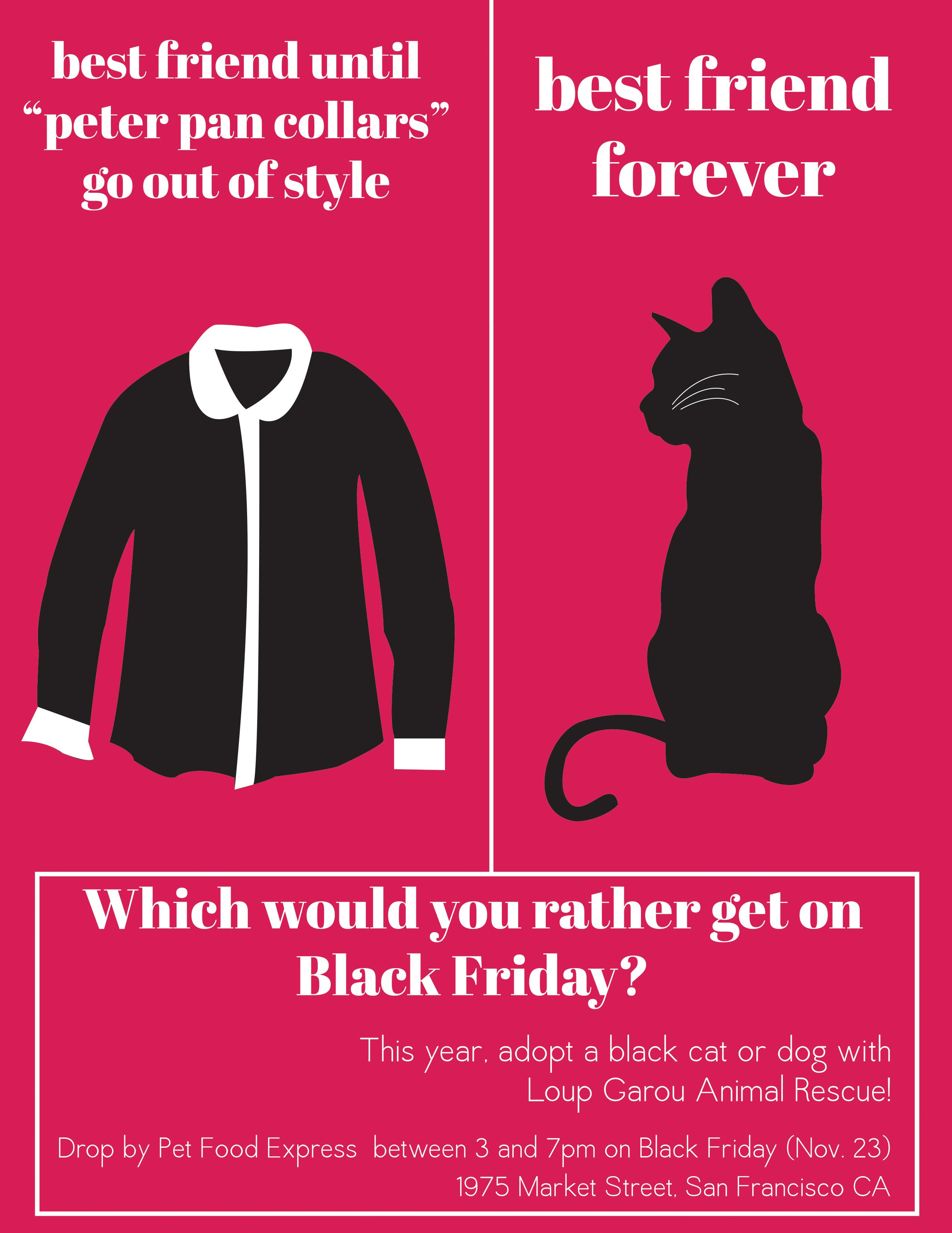 Black Friday Animal Rescue Black Cat Animal Behavior