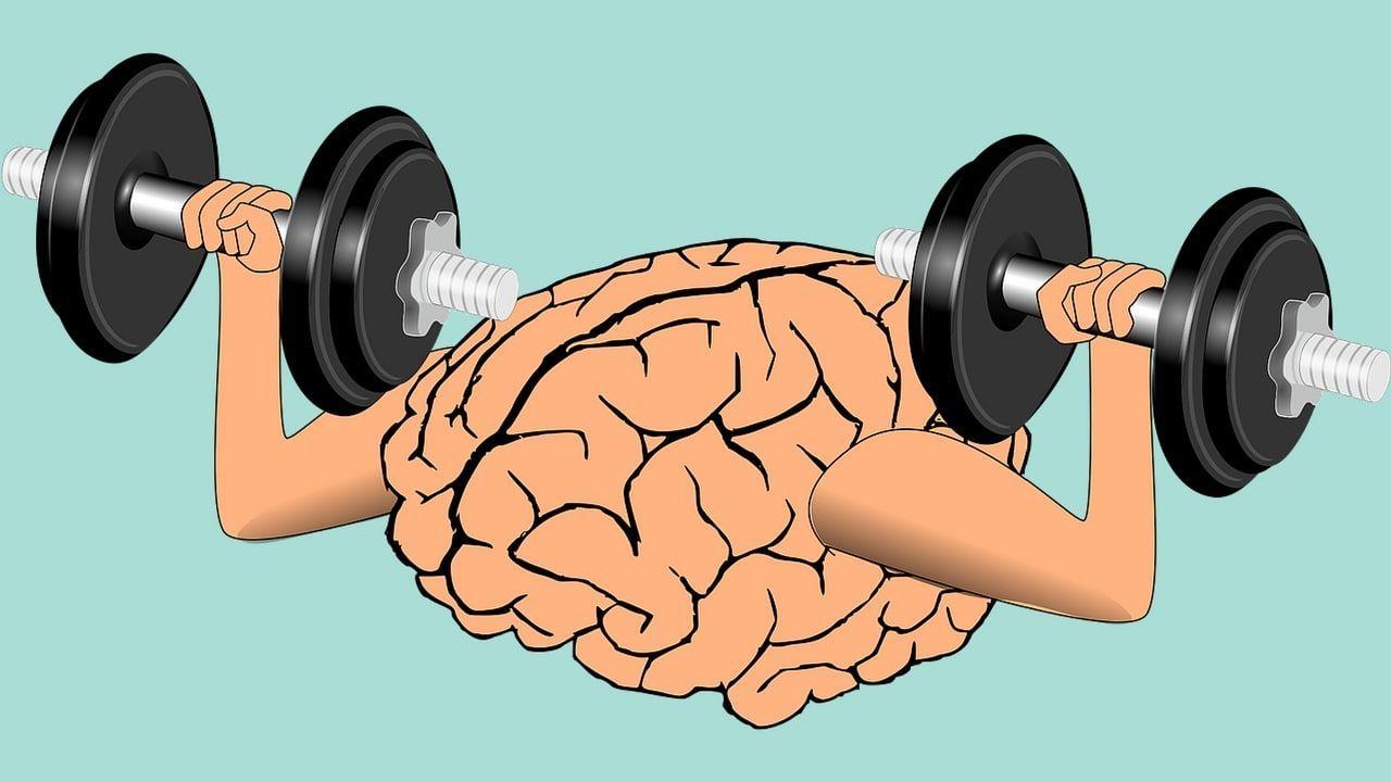 Descarga Las Declaraciones De Riqueza Del Libro Los Secretos De La Mente Millonaria Para Empezar A Cambiar L Brain Supplements Brain Training Growth Learning