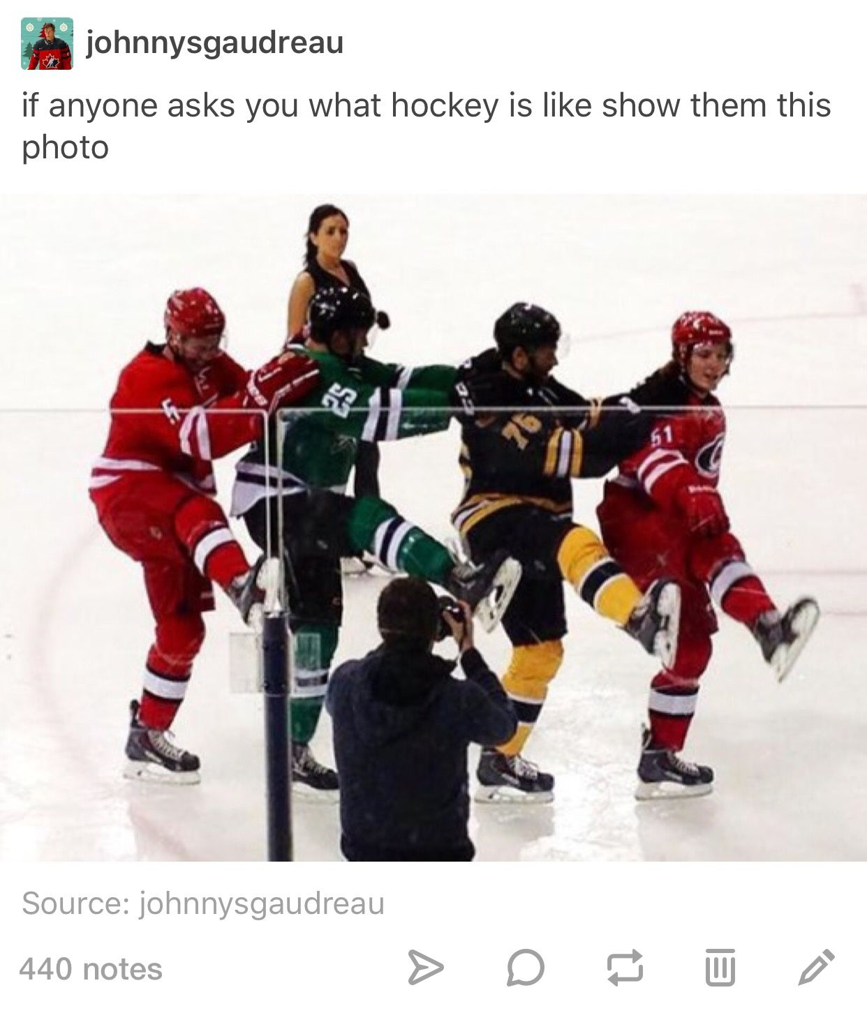 Famous Hockey Quotes Rookies Go Through So Much  Sports And Bets  Pinterest  Hockey