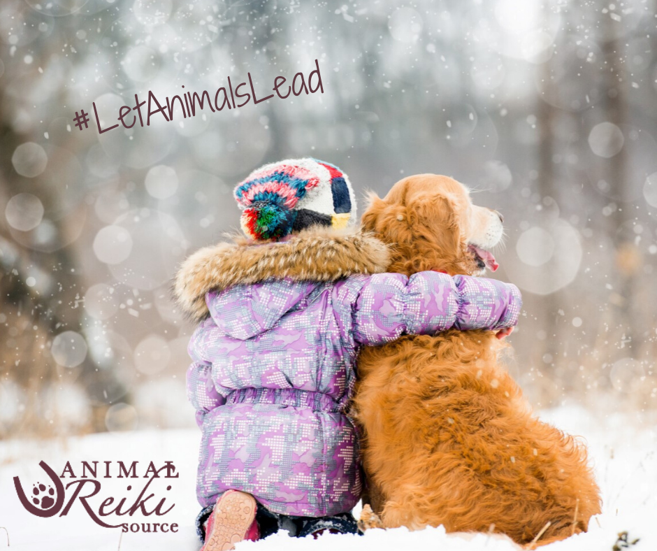 While it's super fun to make kids holidays magical, don't forget to balance out all your consumerism with some charitable giving—specifically, teaching children about the spirit of giving and helping those less fortunate during the holidays! 💕 #LetAnimalsLead #AnimalsLoveReiki #KathleenPrasad #AnimalReikiSource #AnimalReiki #Reiki #reikihealing #reikimaster #reikihealer #reikienergy #animallovers #reikianimal #reikitips #reikiteacher #reikilesson #healingspace #givingspirit #charitablegiving