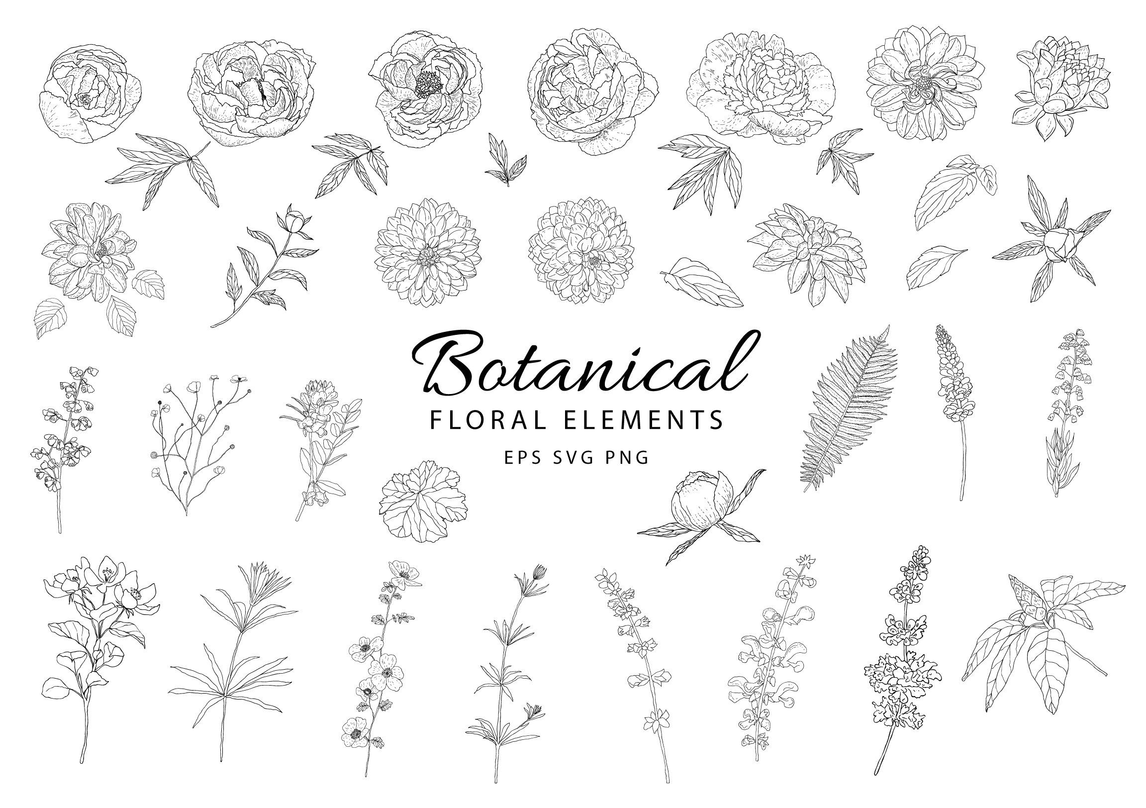 Botanical Clipart Hand Drawn Floral Leaves Peony Dahlia Flower Wedding Foliage Branch Spring Decorate Collection Vector Set Png Eps Svg How To Draw Hands Book Cover Invitation Sell My Art