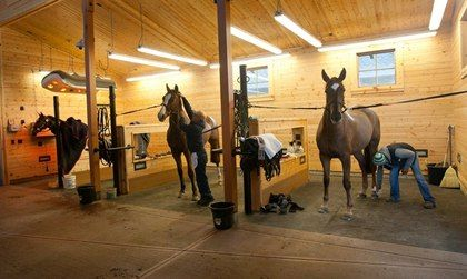 This grooming area includes a therapeutic drying area with heat lamps (far left) and easy-pass-through dividers to store and share grooming supplies and products between stalls.