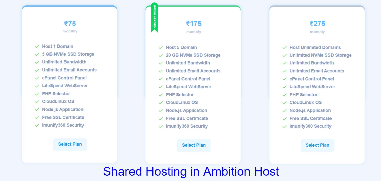15+ Node js shared hosting info