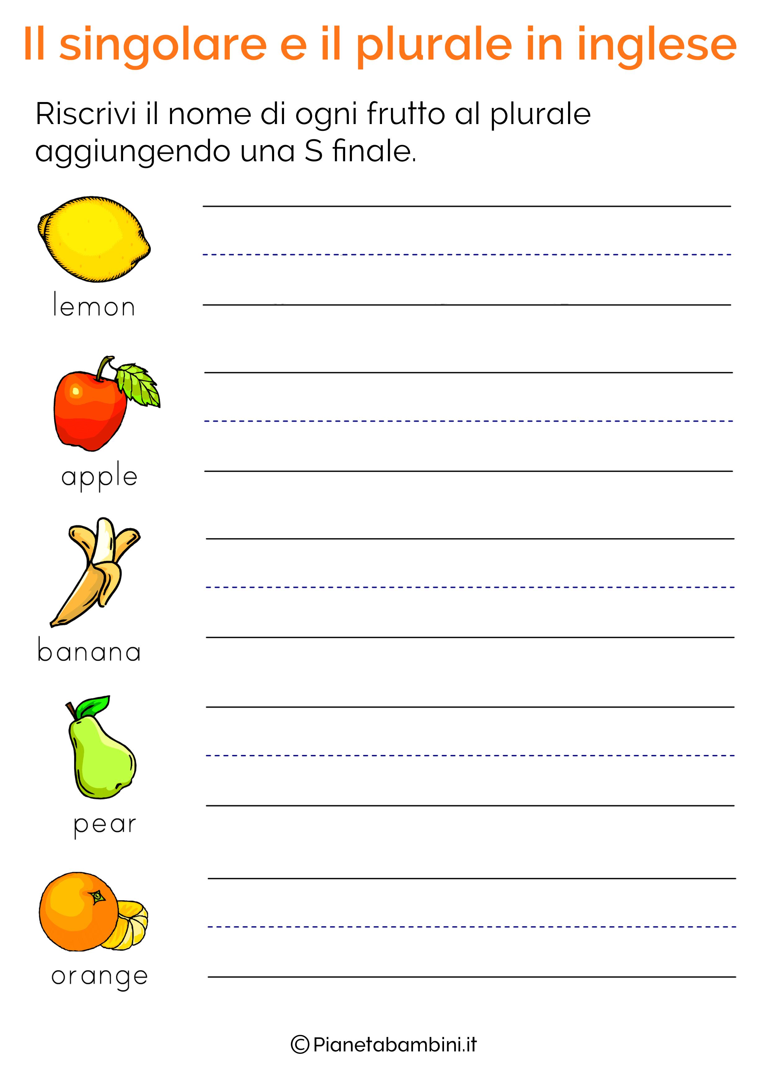 homework plurale o singolare