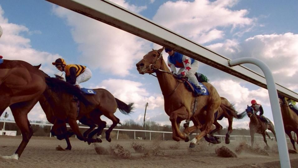 Through The Card: Southwell, Thursday 20 December Do you want daily