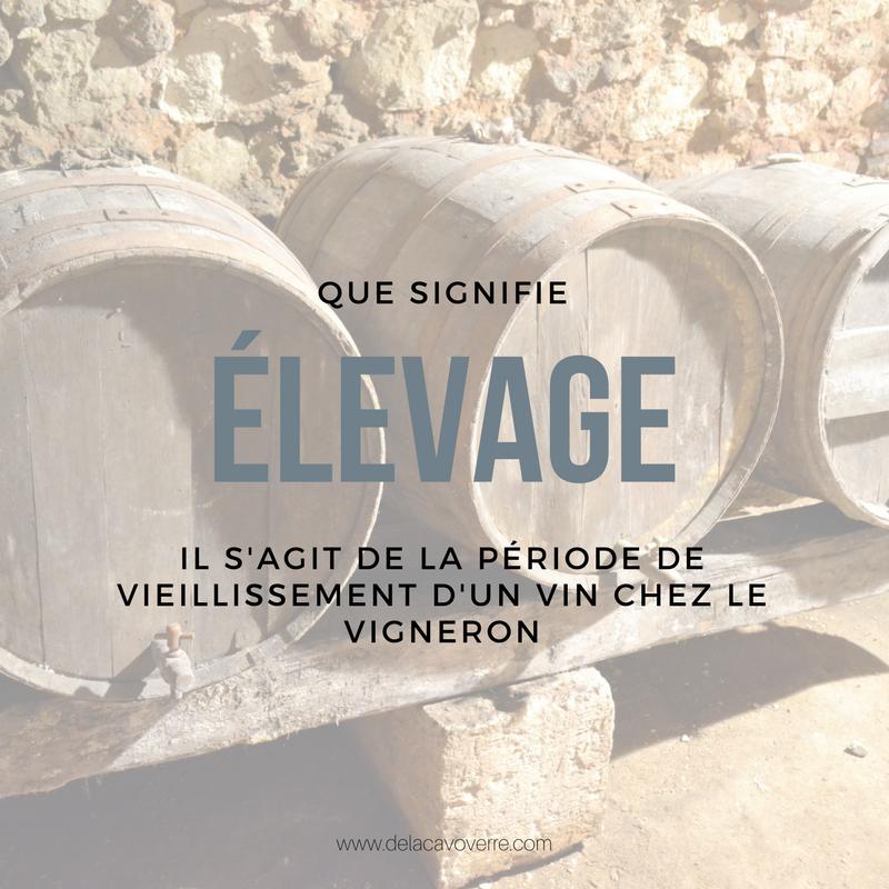 Vocabulaire Vin Vin Cave A Vin Et Vins
