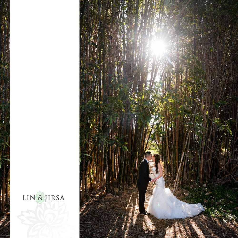 Fullerton Arboretum Wedding: Fullerton Arboretum Post Wedding