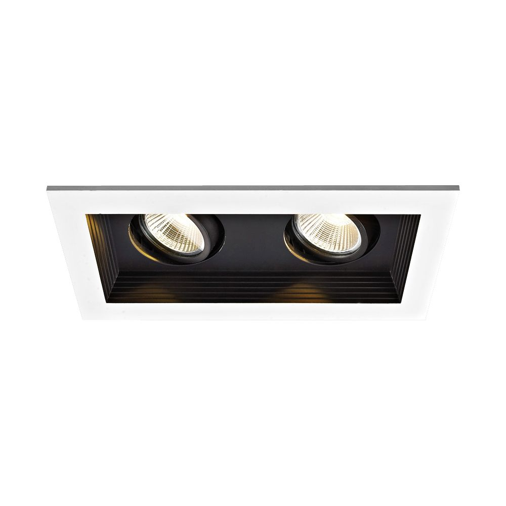 Wac Double Spot Light 22w Led New Construction Recessed Kit