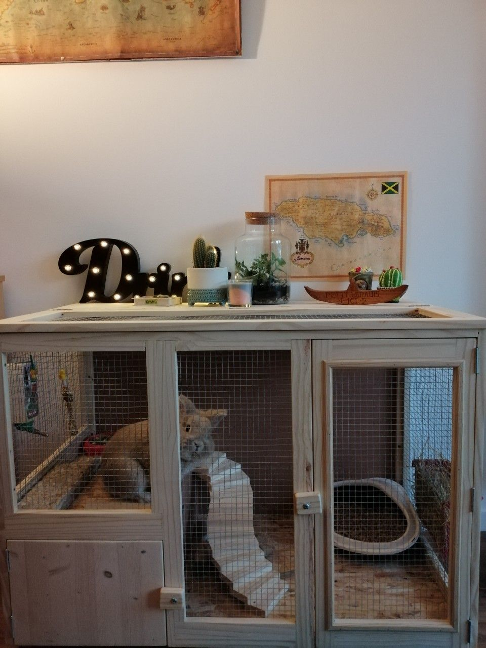 cage à lapin style meuble in 10  Indoor rabbit cage, Indoor