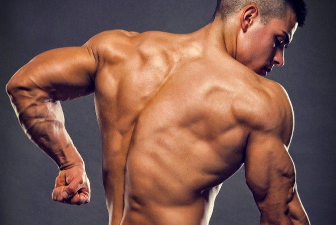 Image result for big triceps