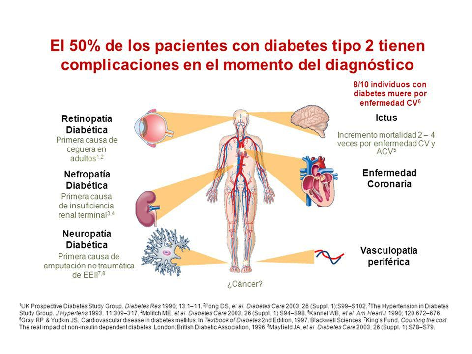 dieta para diabetes 1 paciente