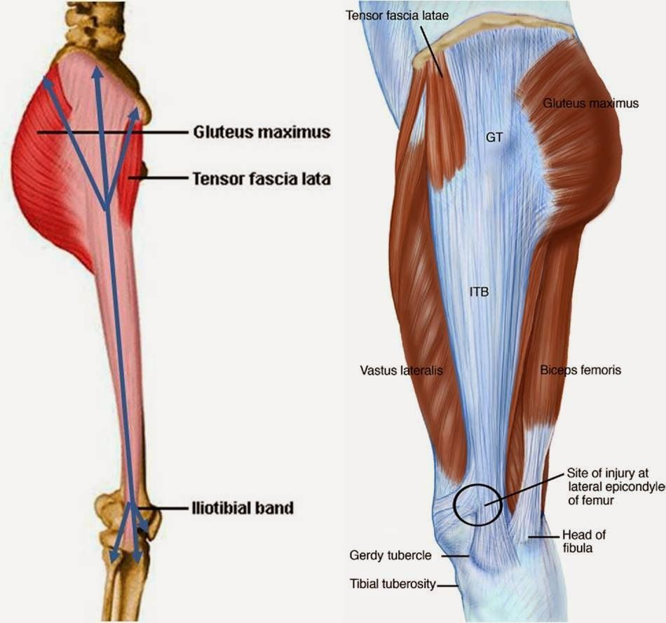 Valoración postural y artro-muscular. Prescripción de ejercicio ...