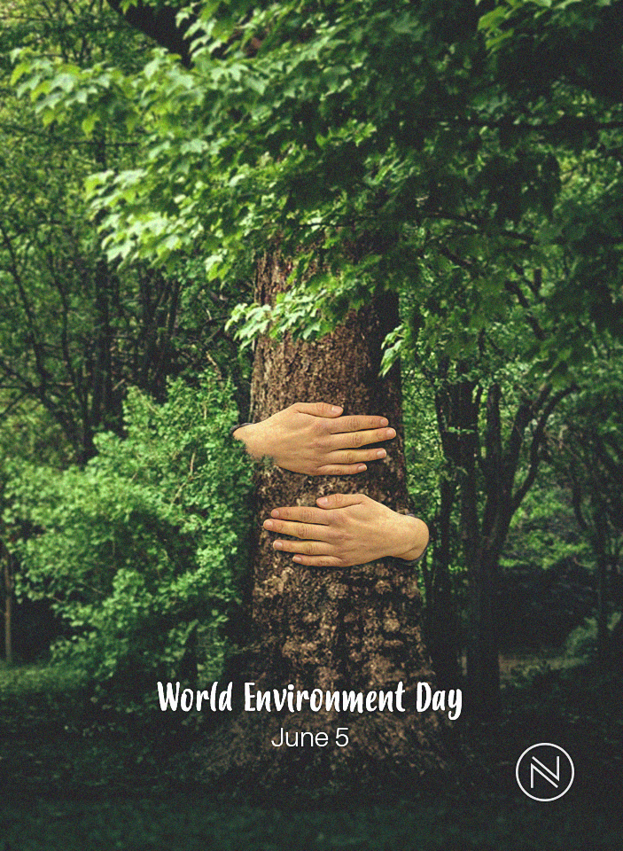World Environment Day June 5 2017 World Environment Day Posters World Environment Day Environment Day
