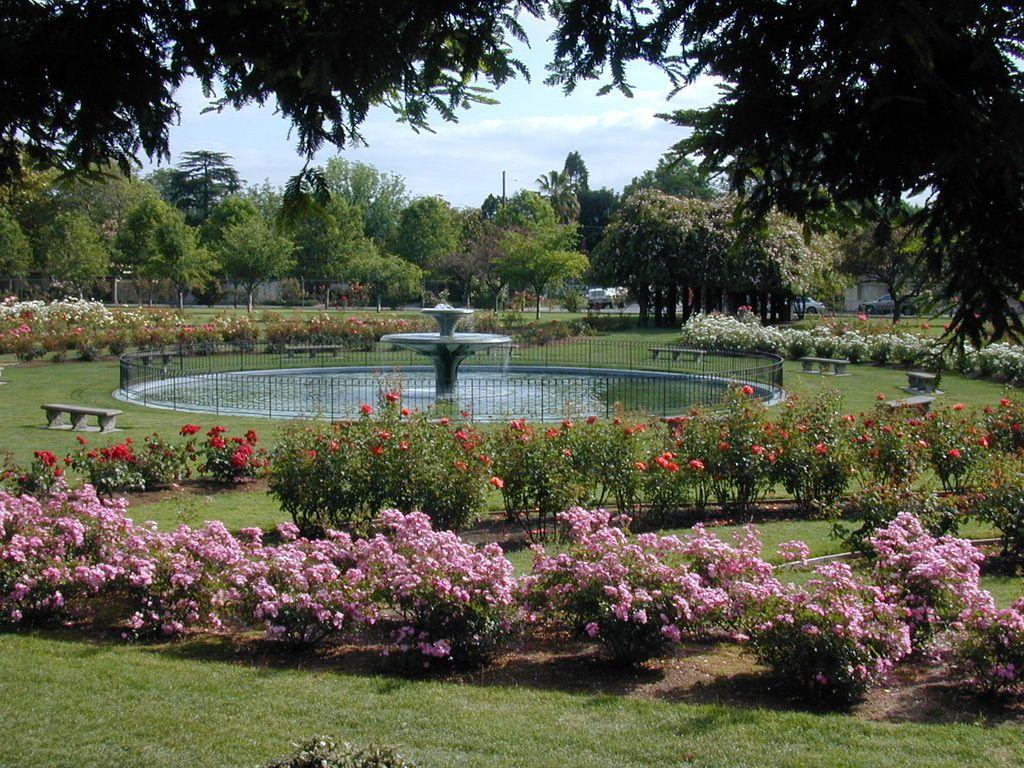 California Gardens San Jose Municipal Rose Garden California Garden Beautiful Gardens Garden